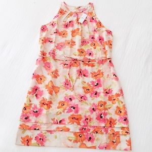 NWT loft floral shift dress